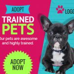 Pet Care Ad Banner Design